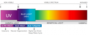 Visual Spectrum